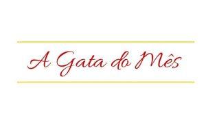 a-gata-do-mes-752x440