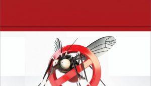 Campanha-Aedes-Aegypti - Novo Gama